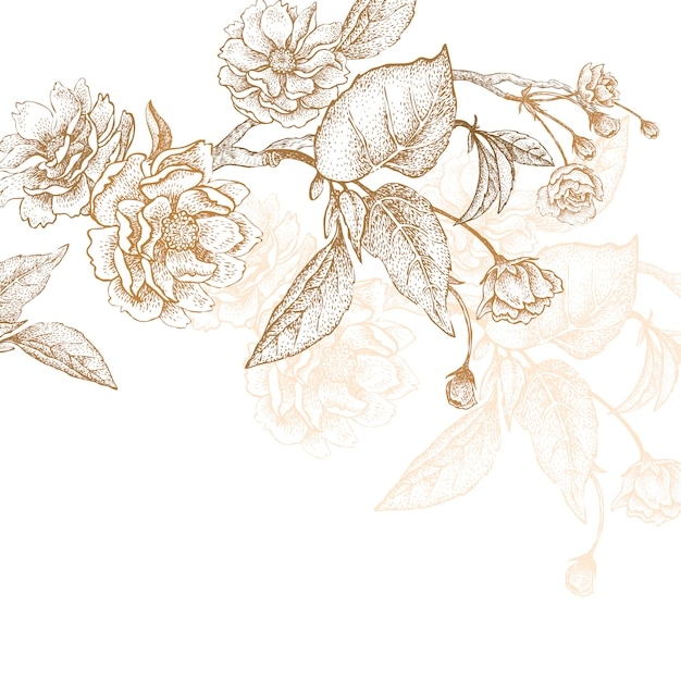 Illustration des blumenpflaumenbaums. Premium Vektoren