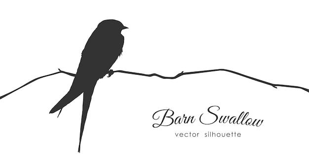 Illustration: silhouette der rauchschwalbe, die auf einem trockenen zweig sitzt. Premium Vektoren