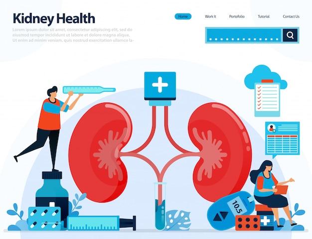 Illustration zur überprüfung der nierengesundheit. krankheiten und störungen der niere. Premium Vektoren