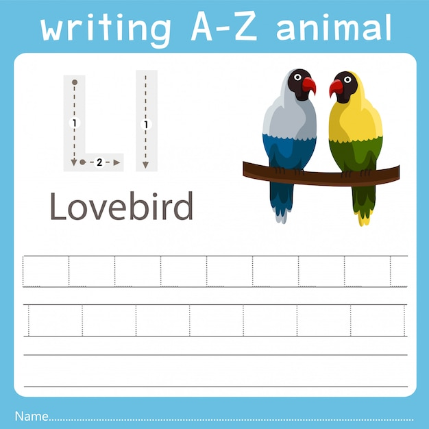 Illustrator, der ein az-tier von lovebird schreibt Premium Vektoren