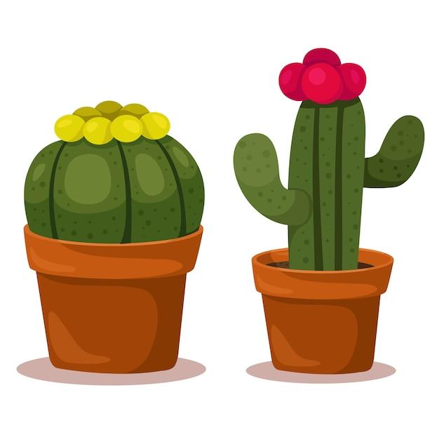 Illustrator des kaktus Premium Vektoren