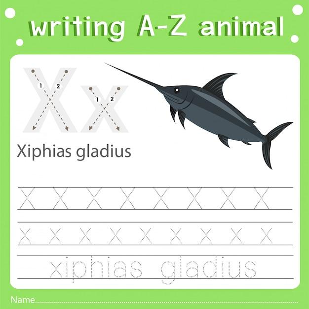 Illustrator des schreibens von az animal x xiphias gladius Premium Vektoren