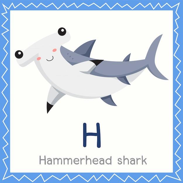 Illustrator von h für hammerhai-tier Premium Vektoren