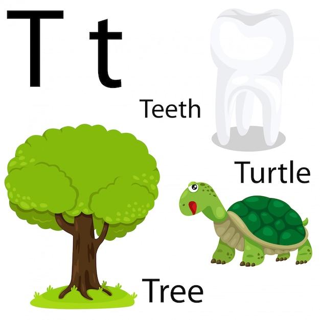 Illustrator von t-alphabet Premium Vektoren