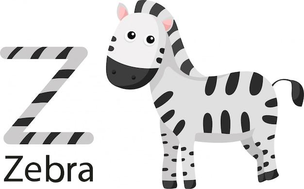 Illustrator von z mit zebra Premium Vektoren