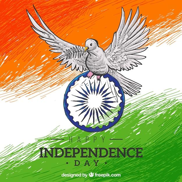 Indische Flagge Hintergrund Hand Gemalt Mit Einer Taube Download