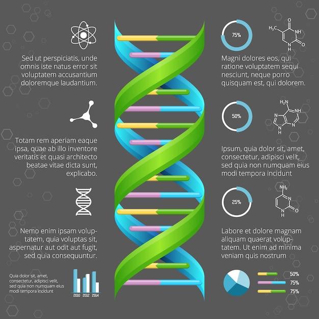 Infografik-vorlage mit dna-struktur für die medizinische und biologische forschung. genetische gesundheit, lebensentwicklung, modelllinienhelix Kostenlosen Vektoren
