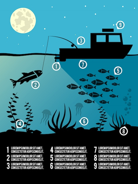 Infographik angeln vorlage Premium Vektoren