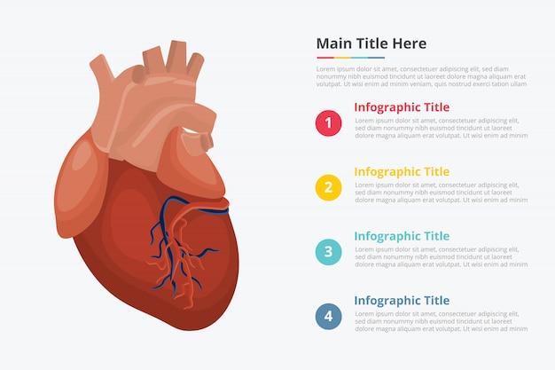 Infographik vorlage des menschlichen herzens Premium Vektoren