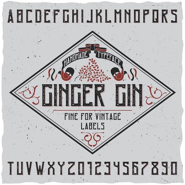 Ingwer-gin-schriftplakat mit dekoration auf einfacher etikettendesignillustration Kostenlosen Vektoren