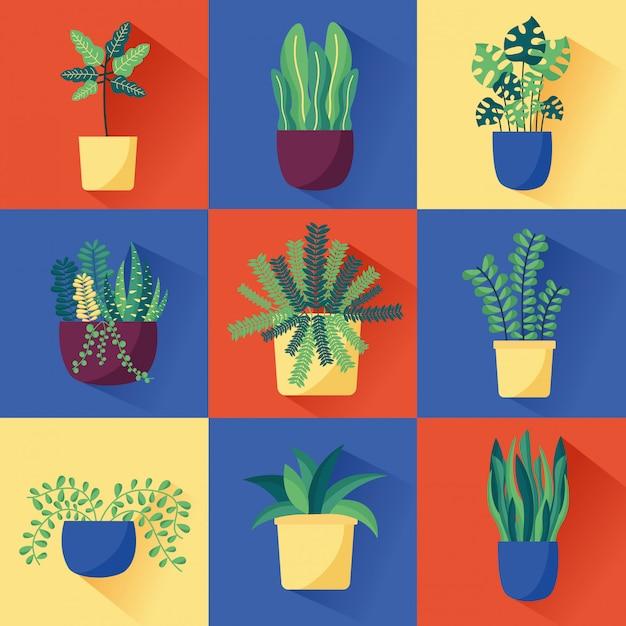 Innenarchitektur der dekorativen zimmerpflanzen Kostenlosen Vektoren