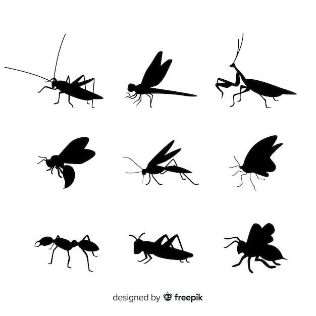 Insekt silhouette kollektion Kostenlosen Vektoren