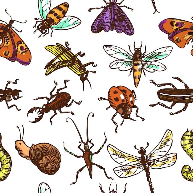 Insekten skizzieren nahtlose musterfarbe Premium Vektoren