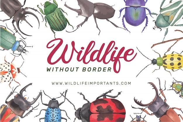Insekten- und vogelrahmen mit verschiedener käferaquarellillustration. Kostenlosen Vektoren
