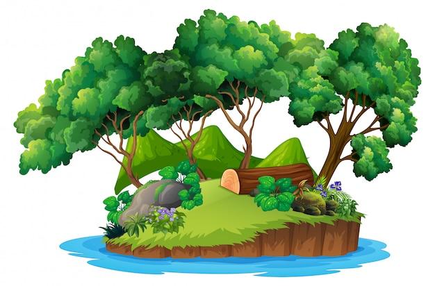 Isolierte grüne naturinsel Premium Vektoren