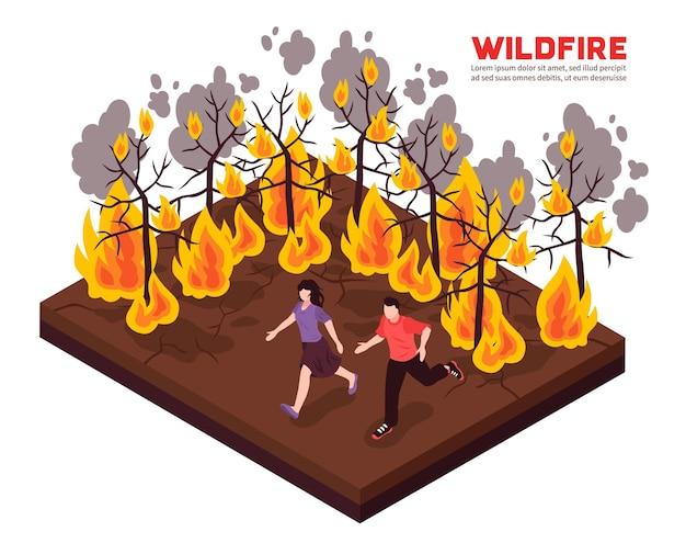 Isometrische zusammensetzung des verheerenden feuers mit den leuten, die weg von flamme von brennenden waldbäumen laufen Kostenlosen Vektoren