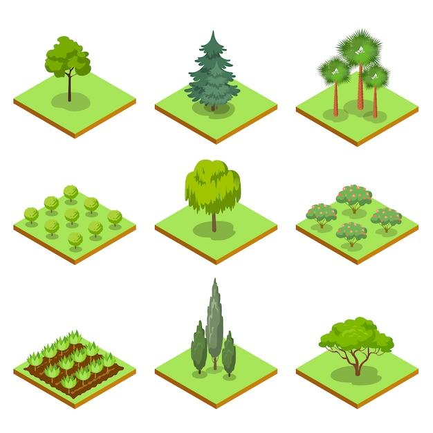 Isometrischer satz 3d der dekorativen bäume des öffentlichen parks Premium Vektoren