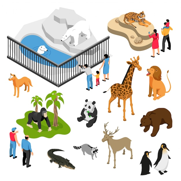 Isometrischer satz tiere und leute während des besuchs zum zoo auf weiß lokalisiert Kostenlosen Vektoren