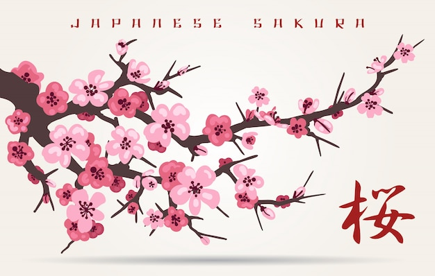 Japan-kirschblütenbaumast Premium Vektoren