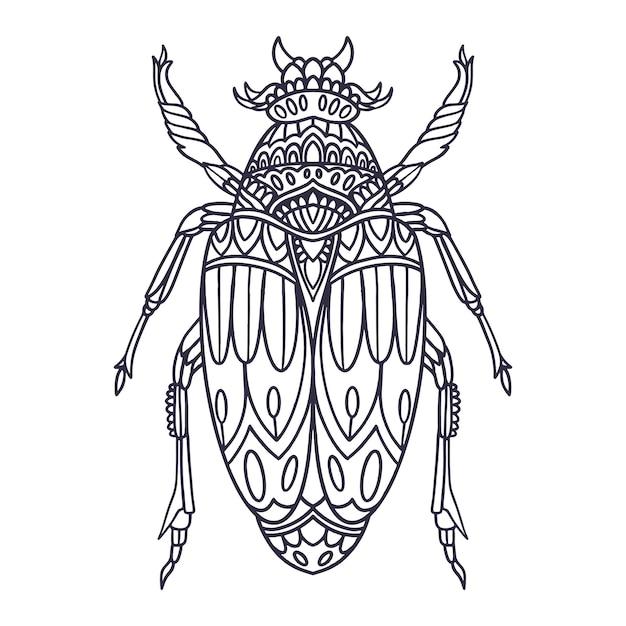 Käferhand gezeichnete illustration mit gekritzelart Premium Vektoren