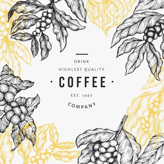 Kaffeebaumastillustration. Premium Vektoren