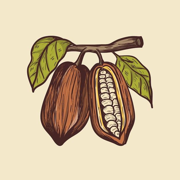Kakaohandzeichnung ilustration Premium Vektoren
