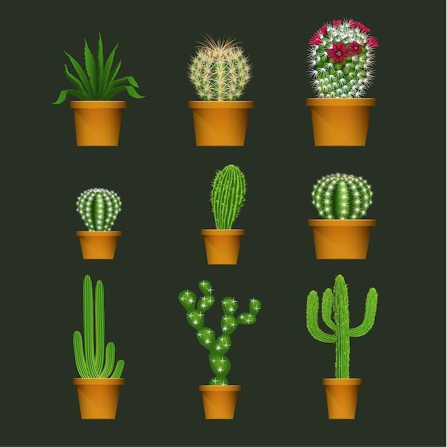 Kaktus in den realistischen betriebsikonen des blumentopfes eingestellt Premium Vektoren