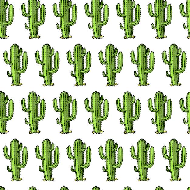 Kaktus nahtloses muster. sukkulente oder tropische pflanze. wilder westen und cowboy. gravierte hand gezeichnet in alten skizze oder und vintage-stil und etiketten für drucke. Premium Vektoren