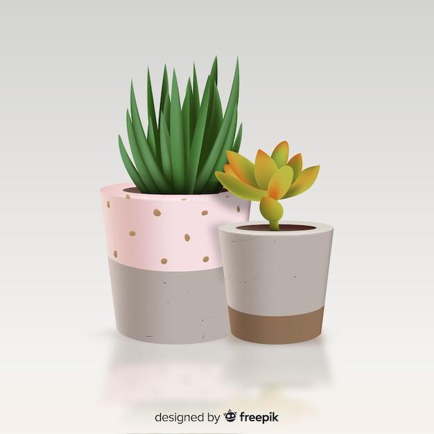Kaktuspflanze im realistischen stil Kostenlosen Vektoren