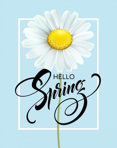 Kalligraphische aufschrift hallo frühling mit frühlingsblume - blühendes weißes gänseblümchen. Premium Vektoren