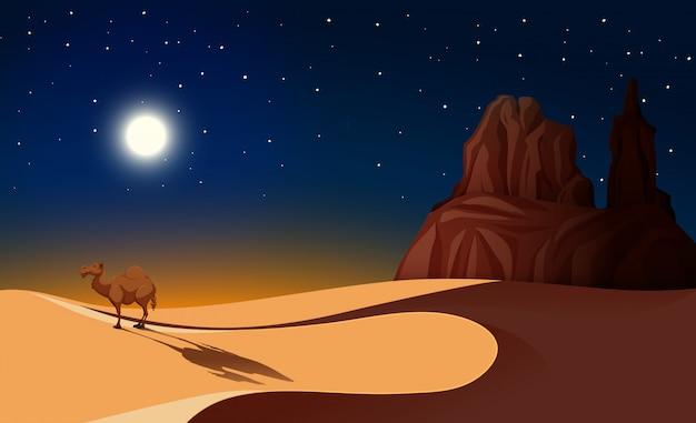 Kamel in der wüste in der nacht Premium Vektoren