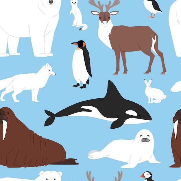 Karikatur-eisbär oder pinguin-zeichensammlung der arktischen tiere mit wal-rentier und robbe im schneebedeckten winterantarktis-satz nahtlosen musterhintergrund Premium Vektoren