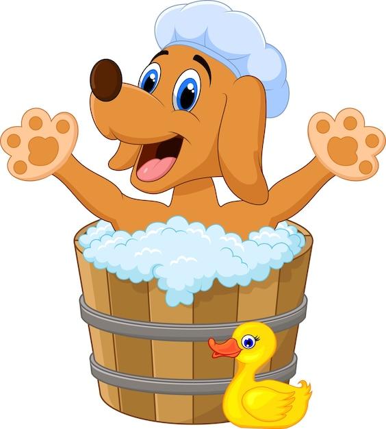 Karikatur-hund, der im badenden hund badet Premium Vektoren