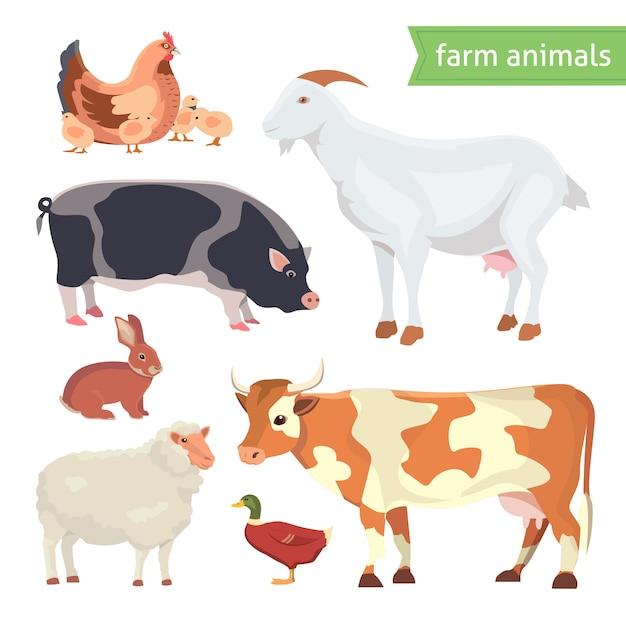 Karikatur-vektor-illustrationssatz von nutztieren lokalisiert auf weiß Premium Vektoren