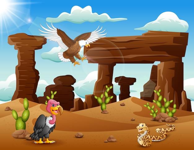 Karikaturadlervogel, -truthahn und -schlange, die in der wüste leben Premium Vektoren