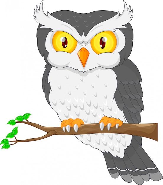 Karikatureulenvogel, der auf dem baum aufwirft Premium Vektoren