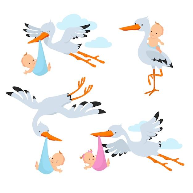 Karikaturfliegenstörche und storchvögel, die babyvektorsatz tragen Premium Vektoren