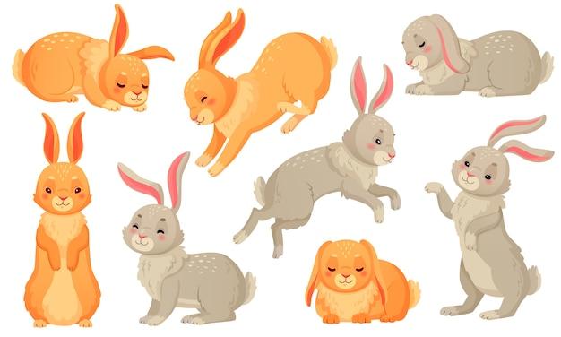 Karikaturhäschen, kaninchenhaustiere, osterhasen und plüsch kleines frühlingskaninchenhaustier lokalisierten satz Premium Vektoren