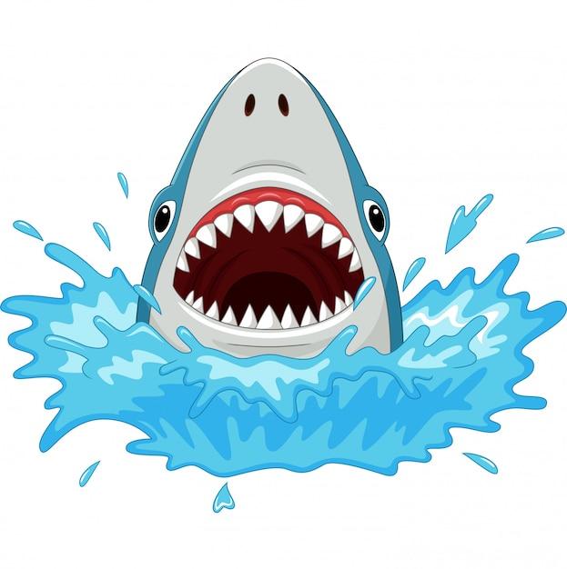 Karikaturhaifisch mit den offenen kiefern lokalisiert auf einem weiß Premium Vektoren