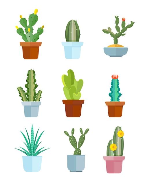 Karikaturkaktus, wüstenpflanzenvektorikonen Premium Vektoren