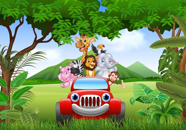 Karikaturtiere afrika im roten auto Premium Vektoren