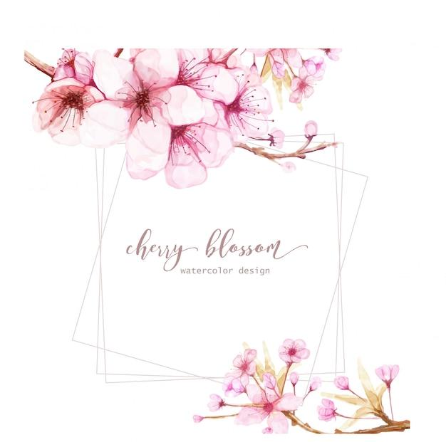 Kartenschablone mit aquarellblumen der kirschblüte Premium Vektoren