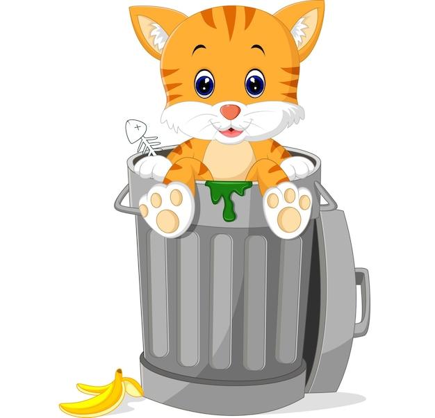 Katze, die abfalleimer schaut Premium Vektoren