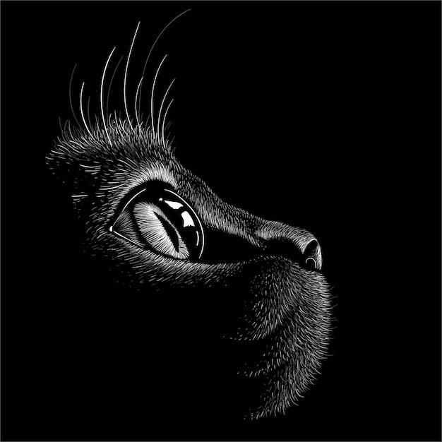 Katze mit schwarzem hintergrund. Premium Vektoren