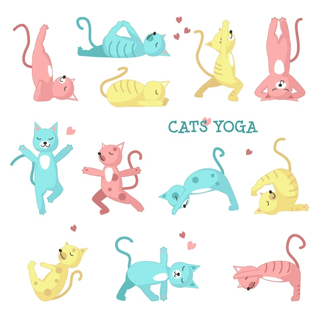 Katzen, die yoga-posen machen Premium Vektoren