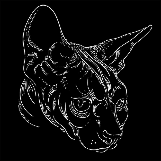 Katzenkopfillustration Premium Vektoren