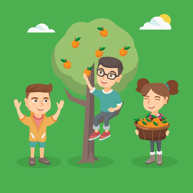 Kinder, die orangen im obstgarten ernten. Premium Vektoren