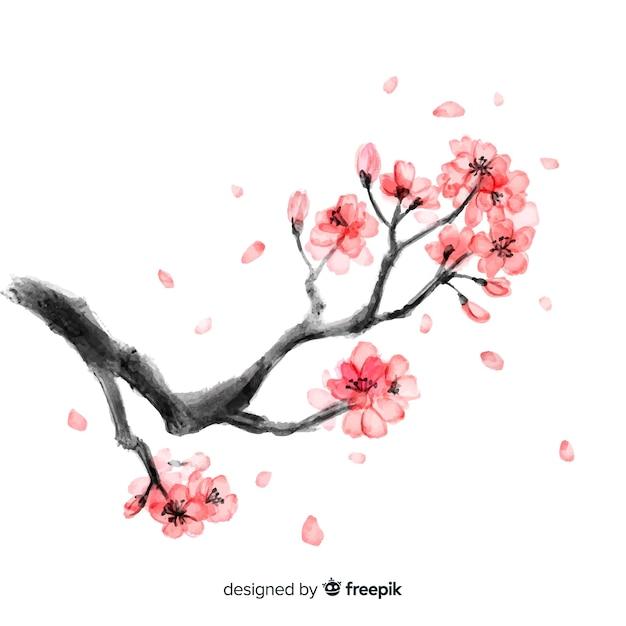 Kirschblüte hintergrund Kostenlosen Vektoren