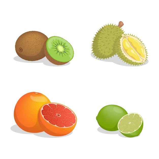 Kiwi, durian, grapefruit und limette Premium Vektoren
