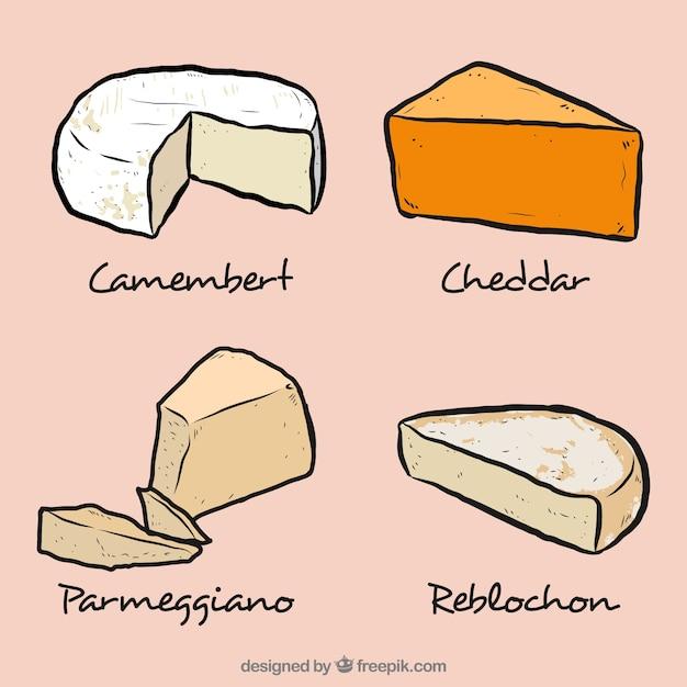 Köstliche selecction käse Kostenlosen Vektoren